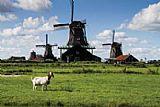 Holanda - 8 dias somente terrestre