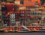 Ribeira do Porto - Dia inteiro - Meio dia