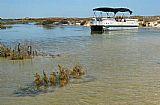 Passeio de Barco no Rio Formosa - Meio dia - Dia inteiro