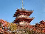 Japão Seleto