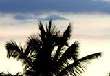 Punta Cana - Voando Copa Airlines - 7 noites.