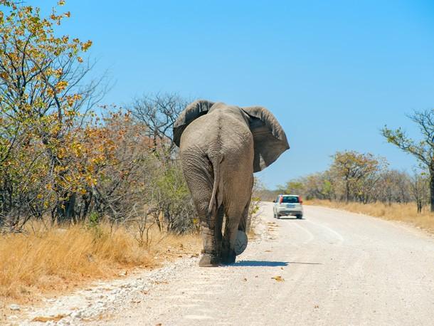 Paisagens da Namíbia Fly & Drive 16 Dias